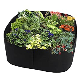 Fabric Raised Planting Bed, Garden Grow Bags Herb Flower Vegetable Plants Bed Rectangle Planter (2ft x 2ft) 1 ✭ Made of a fabric material, a highly durable, UV resistant, non-woven fabric that provides exceptional air flow throughout the soil and root systems and allows excess moisture to easily drain away.Tips:Because they are felt material,in order to stay up be more perfect,you can some kind of a frame to help hold them up. ✭ Quickeasy to setup, relocate, wash and store for future use. Reusable containers durable enough for many seasons use. ✭ Easy to use: unfold, fill and grow; Ideal for an herb garden, small flower garden or vegetables.