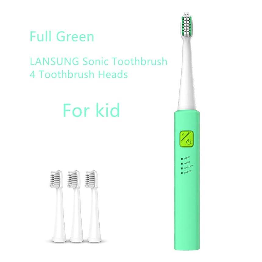超音波ソニック電動歯ブラシUSB充電式充電式歯ブラシ4個交換ヘッドタイマーブラシ付き,2