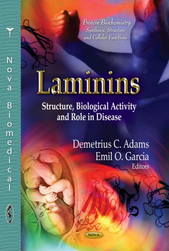 Laminins: Structure, Biological Activity &Role in Disease (Protein Biochemistry, Synthesis, Structure and Cellular Functions)