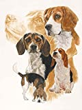 Beagle and Ghost Image by Barbara Keith Art Print, 18 x 24 inches