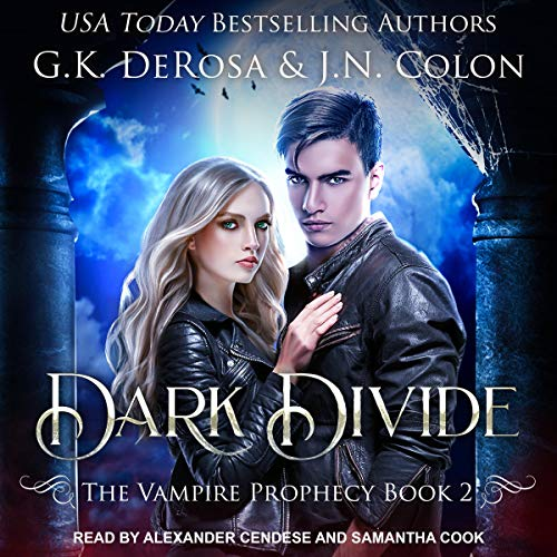 Dark Divide audiobook cover art