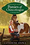 Chasing Gold (Marguerite Henry's Ponies of Chincoteague Book 3) (English Edition)