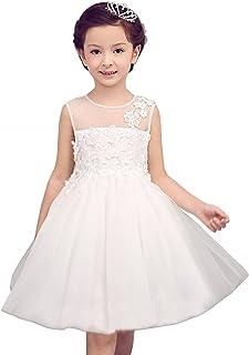 Dorababy 夏 子供服、子供スカート 対外貿易 子供の花柄ワンピース 欧米刺繍ドレス [並行輸入品]