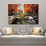 DECORARTE - Cuadros Impresión Digital - Fotografía sobre Cristal Nature 017 (120cm x 80cm)