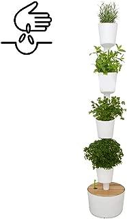Amazon.es: huertos urbanos - Recipientes para plantas y accesorios ...
