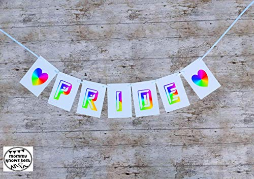 'PRIDE' Bunting. Outdoor Party Banner. Indoor Decoration Banner. WATERPROOF Garland LGBTQ Gay Pride Party. READY TO HANG