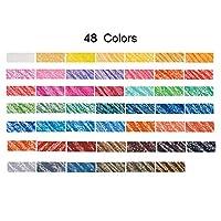 36/48色鉛筆アート専用手描きのプロパステルスティックチョークグラフィティ用色鉛筆イラスト (Size:48; Color:Color)