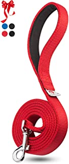 Dutchy Brand Heavy-Duty Dog Leash - Training-Lead with Comfortable Handle - 6 Feet Long by 1 Inch Wide - Perfect Length to...