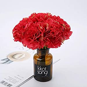 Artificial and Dried Flower 10 Head Pink Silk Carnation Artificial Flowers Bridal Bouquet for Home Wedding Decoration DIY Silk Carnation Fake Flowers – ( Color: Red; Size: 10pcs )