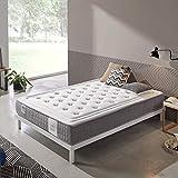 Dreaming Kamahaus | Colchón Platinum Visco Spring | Plancha ViscoGrafeno con Gel frío | Núcleo SpringBox | 90 x 180 cm | Altura 24 cm