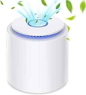 Purificateur d'Air Portable avec HEPA Filtre, Pas d'ozone, USB Épurateur..