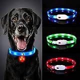 Oladwolf Collar Luminoso Perro, USB Recargable Collar Perro luz Seguro 3 Modos, Collar LED Impermeable Ajustable para Perro y Gato Menos 20kg - Azul