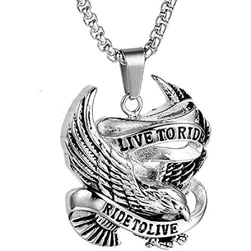 LH&BD Collar de águila para Hombres Viking Head Colgante con 23.6'Cadena Vintage Flying Hawk Totem Amulet Punk Animal Jewelry,Plata