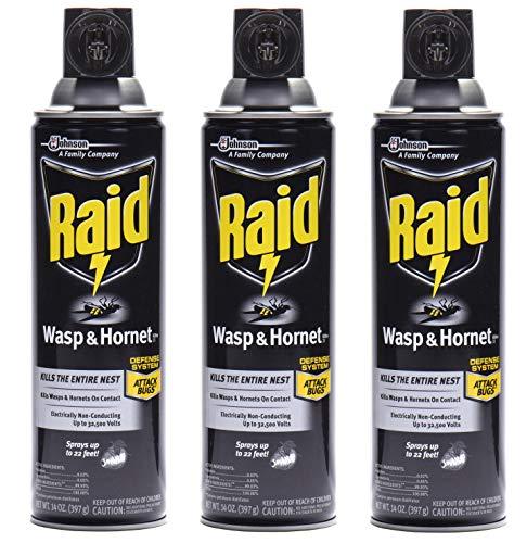 raid best wasp and hornet spray