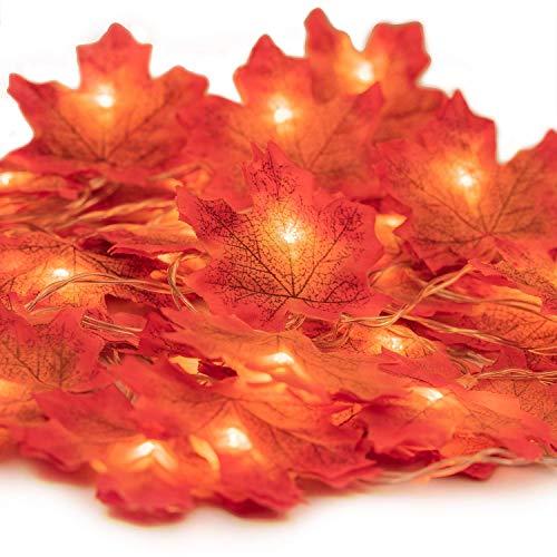 HENMI Guirnaldas luminosas Hoja de Arce Artificial, 2M 20 LED Luces de Cadena Guirnaldas luminosas de Exterior, Guirnalda de Otoño Lámparas Decoradas Iluminación de Navidad de Exterior
