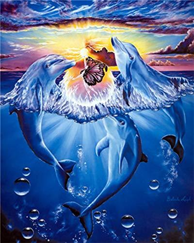 WOWDECOR DIY Malen nach Zahlen für Erwachsene Kinder Mädchen, Blau Delphin Schmetterling Sonnenuntergang 40x50cm Vorgedruckt Leinwand-Ölgemälde (ohne Rahmen)