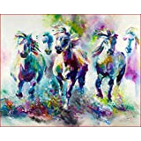 Paint by Numbers Color Horse Pentium Number Kit DIY Brushes & Acrylic Paint by Canvas for Adults Beginner Painting Perfect Item for Decorating Your Home 16x20inch No Frame