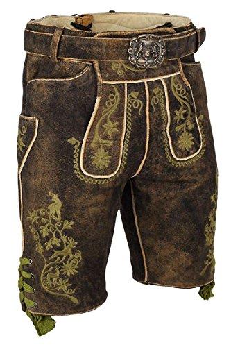 Almsach Herren Kurze Herren-Lederhose braun mit Gürtel grün Bestickt, 806-GF50-BRAUN/GRÜN (braun), 48
