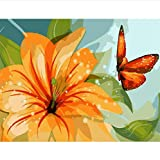 Pintura por números Mariposa en flor Imagen al óleo Decoración del hogar Regalo único hecho a mano Fotos de pared (sin marco)