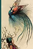 """Peacock Notebook: Lined Peacock Journal, Peacock Gifts for Peacock Lovers (6"""" X 9"""")"""