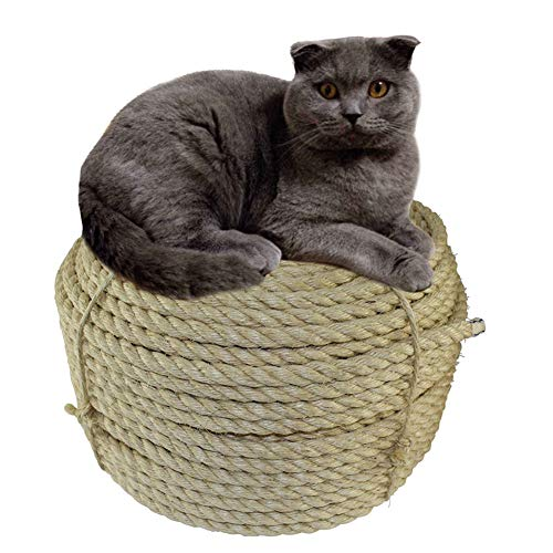 Natural Sisal Seil, 8 mm dick, Starkes Naturseil, 9-lagiges Jute-Seil zum Basteln, für Katzen, Kratzseil, Gartenbündelung, mit Sisalball (30 m)
