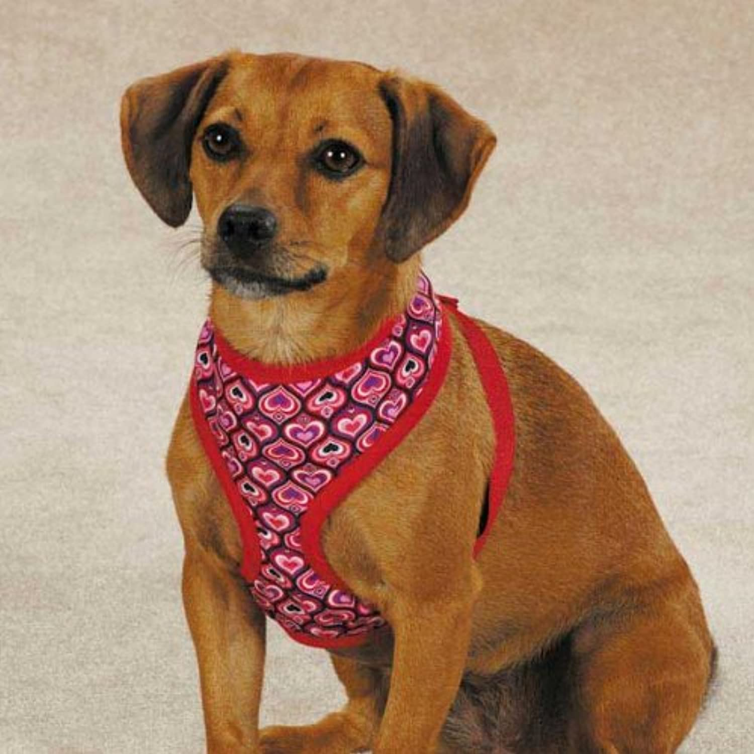 East Side Collection ZW5085 16 83 Full of Heart Harness, Medium, Red