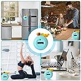 Zoom IMG-2 cjbin timer cucina carino scoiattolo
