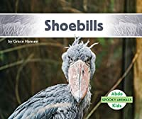 Shoebills (Spooky Animals)
