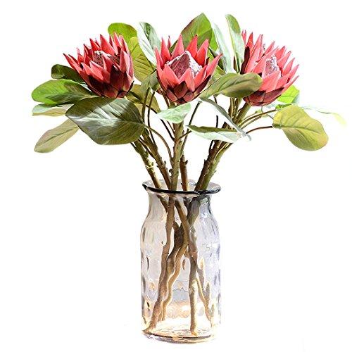 Calcifer Königs-Protea (Protea cynaroides), 6 Stück, Künstliche Blumen, für Dekoration rot
