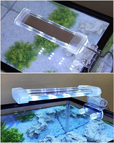 BPS® Lámpara de Acuario LED Iluminación Luces para Plantas Luz Blanco y Azul 2 Modelos para Elegir 4W/8W (4W: 150 x 40 mm) BPS-6871