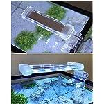 BPS-Aquariumlampe-LED-Beleuchtung-fr-Pflanzen-wasserdicht-weies-und-blaues-Licht-2-Modelle-zur-Auswahl-4-W8-W