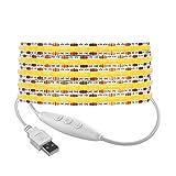 BTF-LIGHTING FCOB Tira de luces LED alimentadas por USB 3.3 pies / 1m 320LEDs COB FOB Regulable Blanco natural 90+ Hight CRI 5V 7W Alta densidad flexible