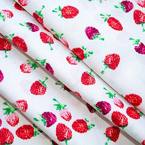 Emily&Joe's fabrics 100% Baumwolle Popeline (Kochfest) Stoff Meterware weiß Himbeeren Früchte Beeren, 50x142cm pro Stück