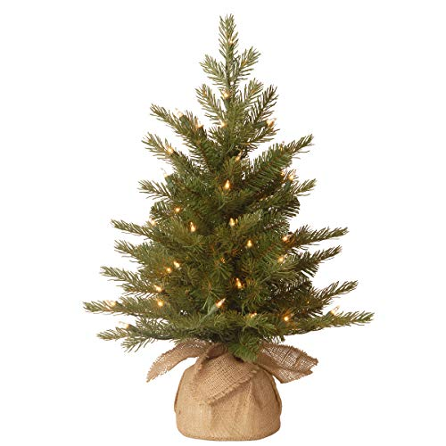 National Tree Company 'Feel Real' Pre-lit Artificial Mini Christmas Tree | Includes Small Lights and Cloth Bag Base | Nordic Spruce - 2 ft
