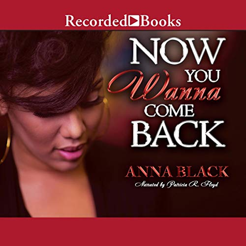 Now You Wanna Come Back audiobook cover art