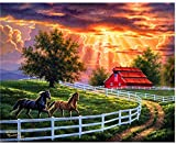 Pintura al óleo de bricolaje Pintura al atardecer y caballo por números Para lienzo niños adultos decoración set de regalo pintura acrílica 40x50cm (sin marco)