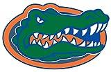 Craftique University of Florida Gator Head Decal-6 Inch Blue/Orange