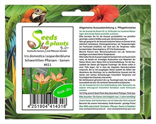Stk - 20x Iris domestica Leopardenblume Schwertlilien Pflanzen - Samen #411 - Seeds Plants Shop Samenbank Pfullingen Patrik Ipsa