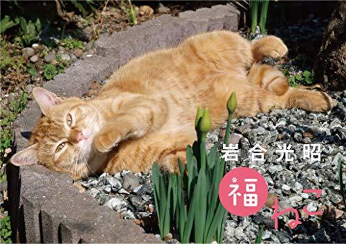 岩合光昭 福ねこカレンダー 2021 ([カレンダー])