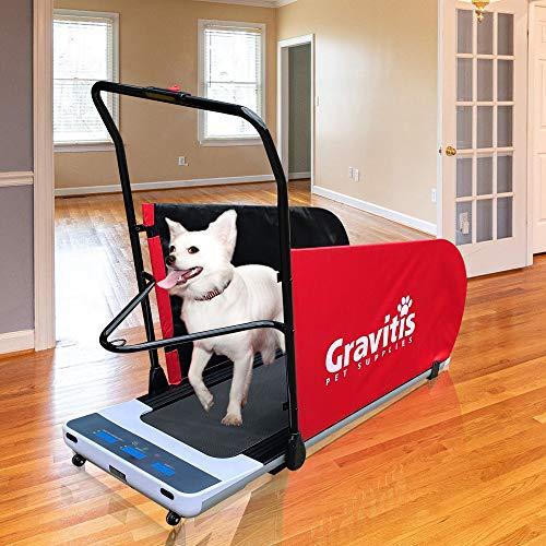 Gravitis Pet Supplies Elektrisches Laufband für Hunde und Menschen Hundetraining motorisierte Laufmaschine für Haustiere und Menschen