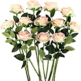 Yyhmkb 12 Piezas De Rosas Artificiales, 19,7 Pulgadas De Seda Realista De Tallo Largo Falso Flor Rosa para Boda Ramo De Novia, Hogar, Oficina, Arreglos Florales Rosa Claro