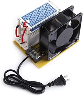 Bicaquu Generador de ozono - 110V/220V 10g/h Esterilizador de Aire Doble Ozonizador de Placa de cerámica con Ventilador(EU AC220V)