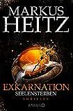 Exkarnation - Seelensterben: Thriller - Markus Heitz