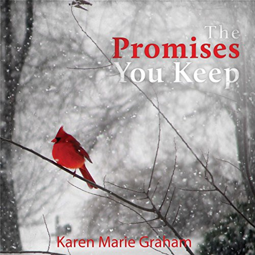 The Promises You Keep audiobook cover art