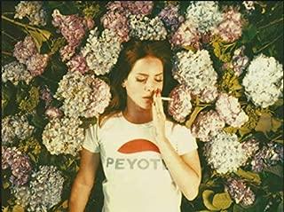 lana del rey smoking poster