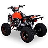 Kinder Quad 125 ccm orange/weiß Panthera - 2