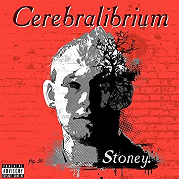 Cerebralibrium