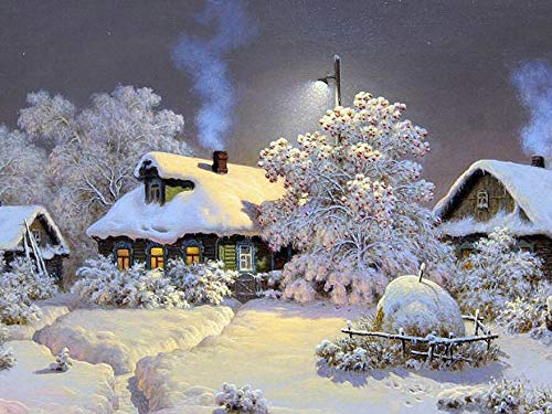 Diamond Painting Inverno Punto Croce Paesaggio Diamante Ricamo Neve Strass Mosaico Completa Layout Home Decor Art A2 30x40cm