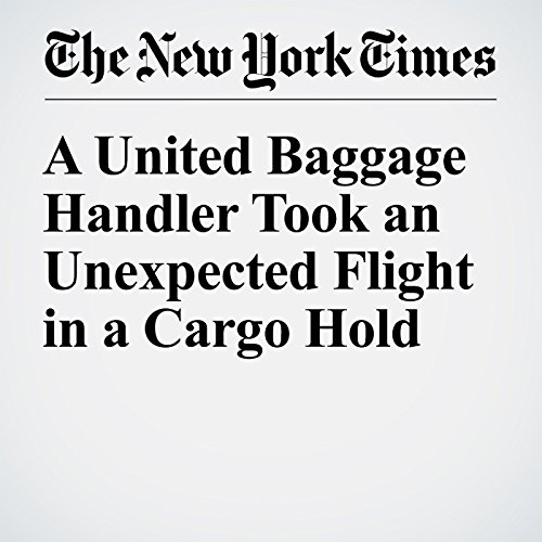 A United Baggage Handler Took an Unexpected Flight in a Cargo Hold copertina