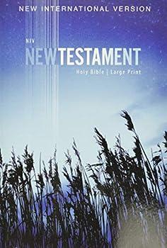 NIV Outreach New Testament Large Print Paperback